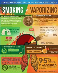 Herb and Oil Vaporizer Health Infographic